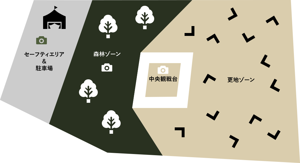 森林や更地をベースとしたフィールド